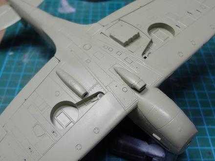 1-DSC00780.JPG